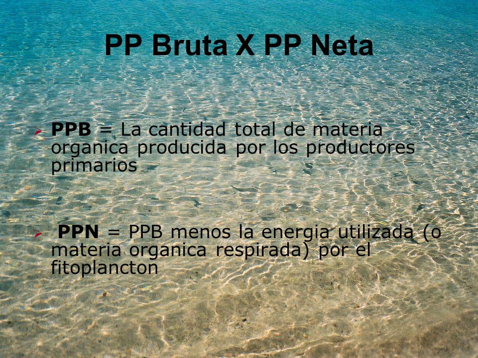 PP Bruta X PP Neta PPB = La cantidad total de materia organica producida por los productores primarios.