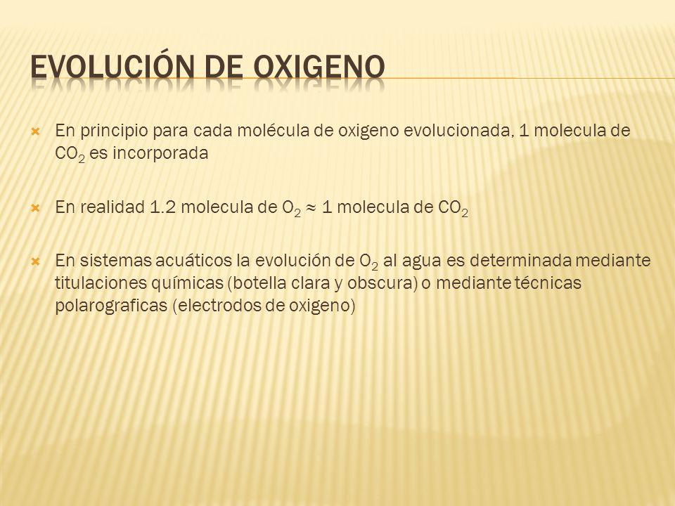 Evolución de Oxigeno En principio para cada molécula de oxigeno evolucionada, 1 molecula de CO2 es incorporada.