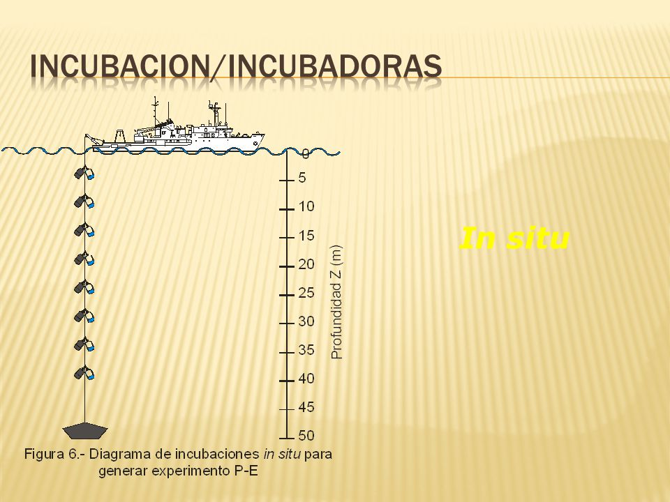 Incubacion/Incubadoras
