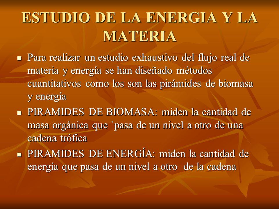ESTUDIO DE LA ENERGIA Y LA MATERIA