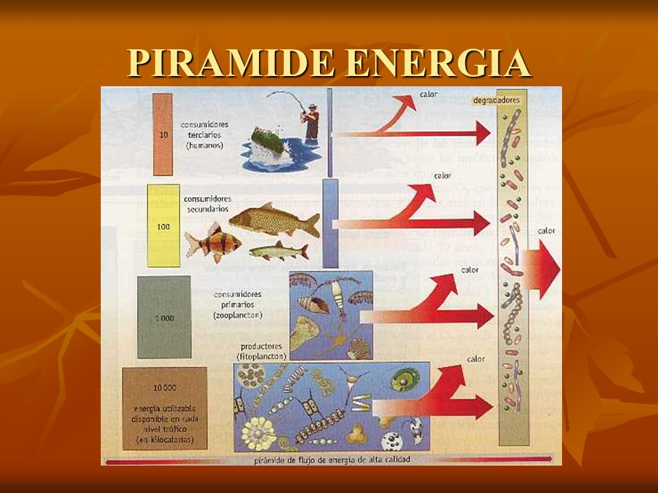 PIRAMIDE ENERGIA