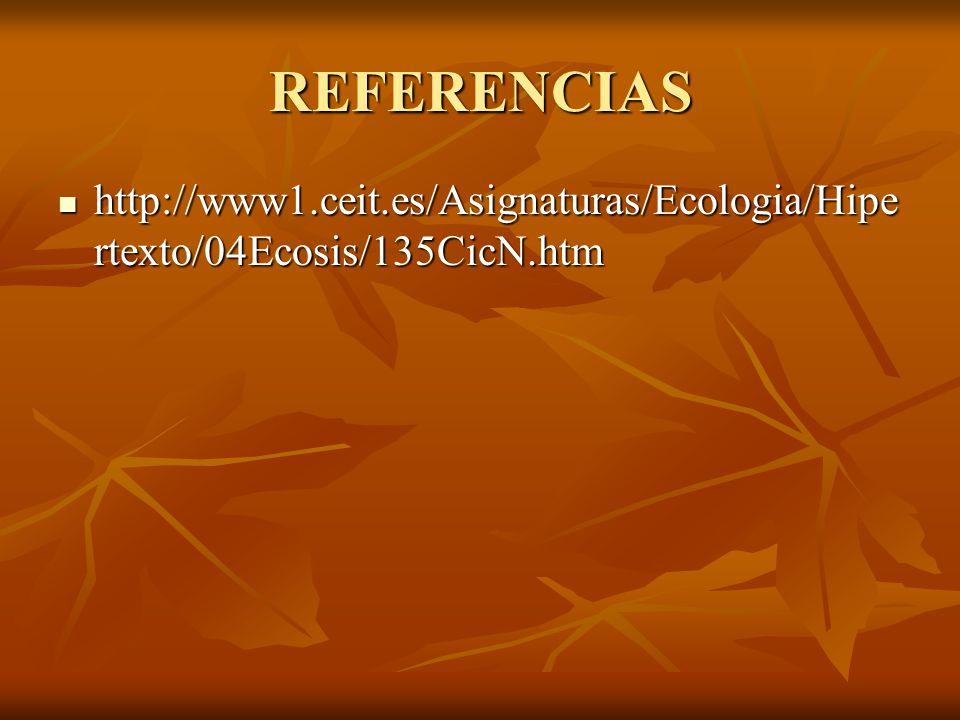 REFERENCIAS http://www1.ceit.es/Asignaturas/Ecologia/Hipertexto/04Ecosis/135CicN.htm