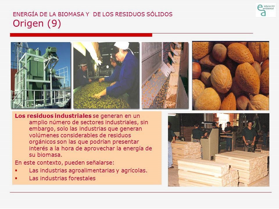 ENERGÍA DE LA BIOMASA Y DE LOS RESIDUOS SÓLIDOS Origen (9)