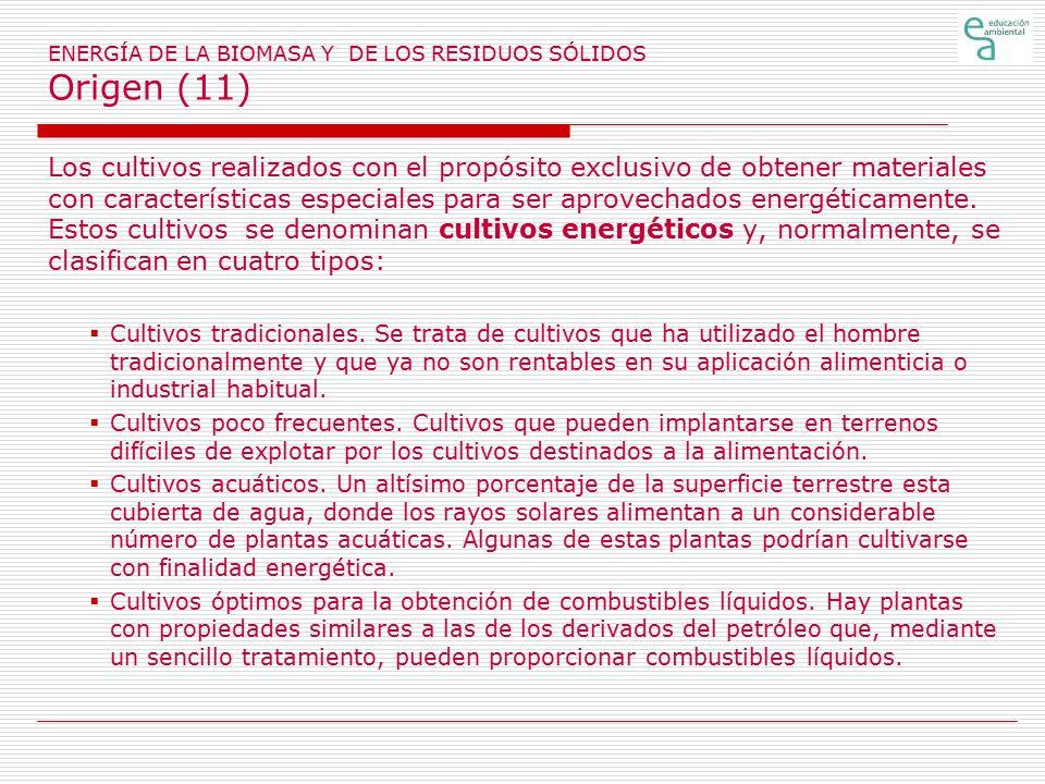 ENERGÍA DE LA BIOMASA Y DE LOS RESIDUOS SÓLIDOS Origen (11)
