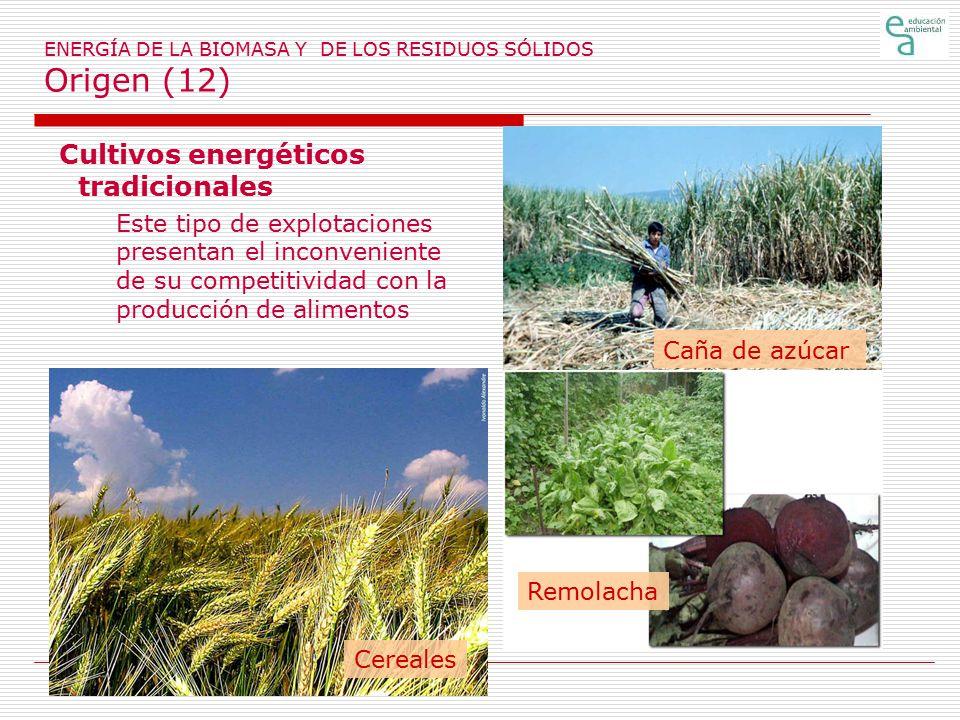 ENERGÍA DE LA BIOMASA Y DE LOS RESIDUOS SÓLIDOS Origen (12)