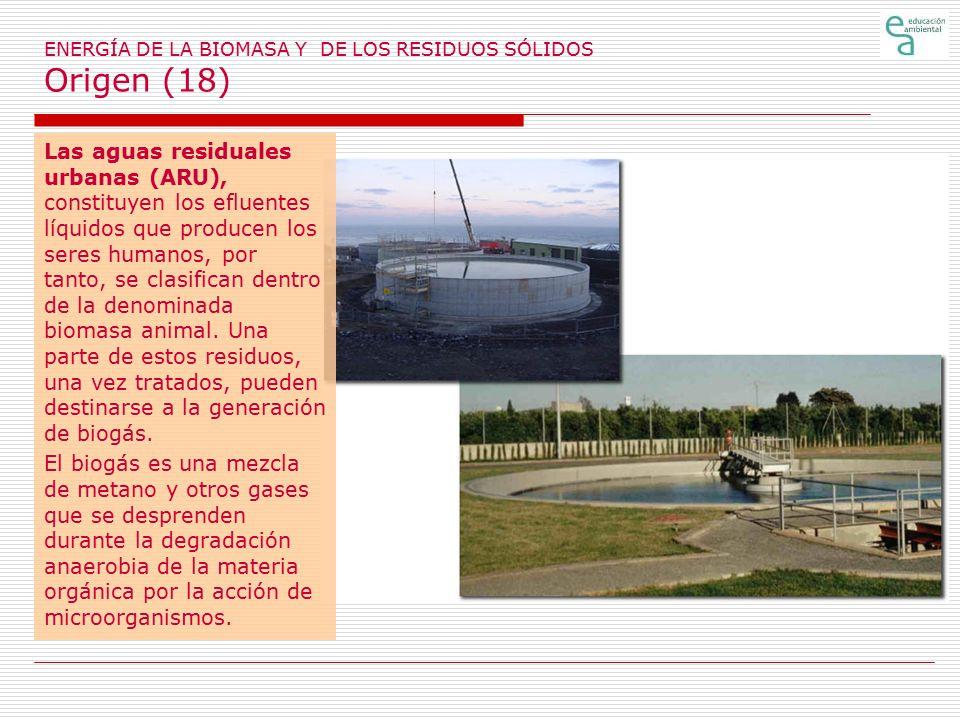 ENERGÍA DE LA BIOMASA Y DE LOS RESIDUOS SÓLIDOS Origen (18)