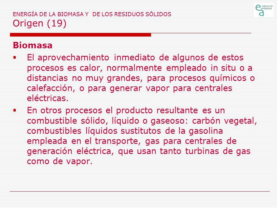 ENERGÍA DE LA BIOMASA Y DE LOS RESIDUOS SÓLIDOS Origen (19)