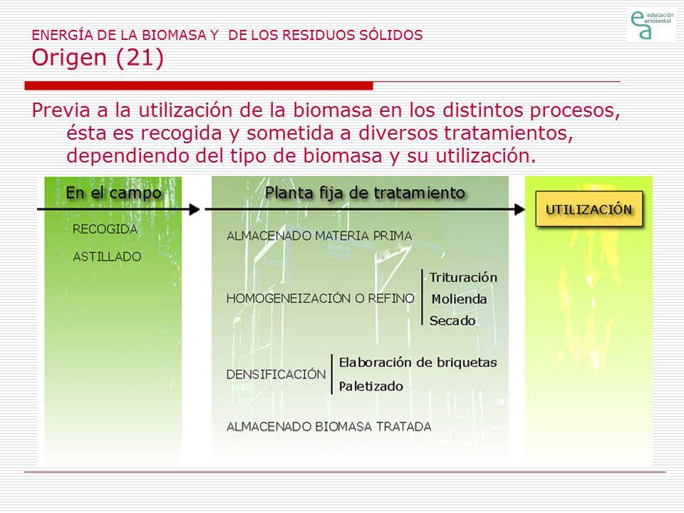 ENERGÍA DE LA BIOMASA Y DE LOS RESIDUOS SÓLIDOS Origen (21)