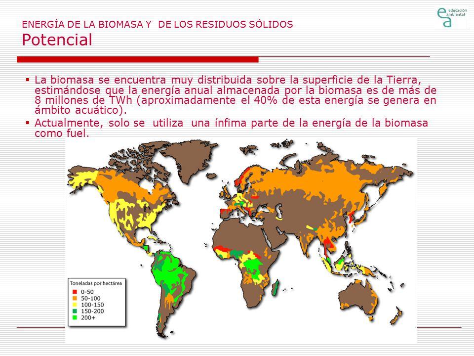 ENERGÍA DE LA BIOMASA Y DE LOS RESIDUOS SÓLIDOS Potencial