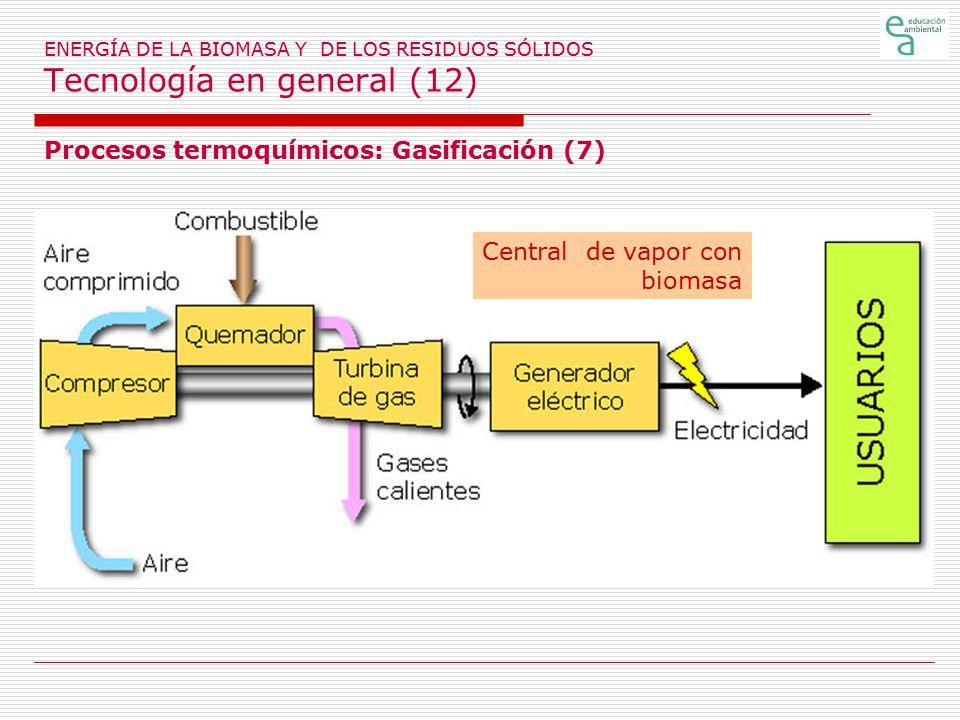 Procesos termoquímicos: Gasificación (7)
