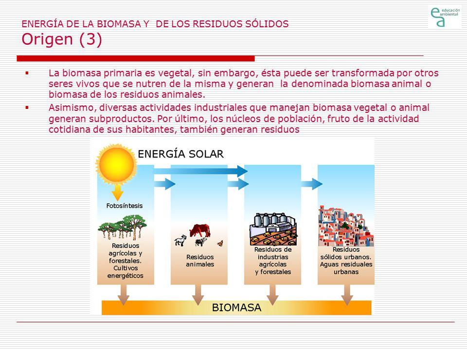 ENERGÍA DE LA BIOMASA Y DE LOS RESIDUOS SÓLIDOS Origen (3)