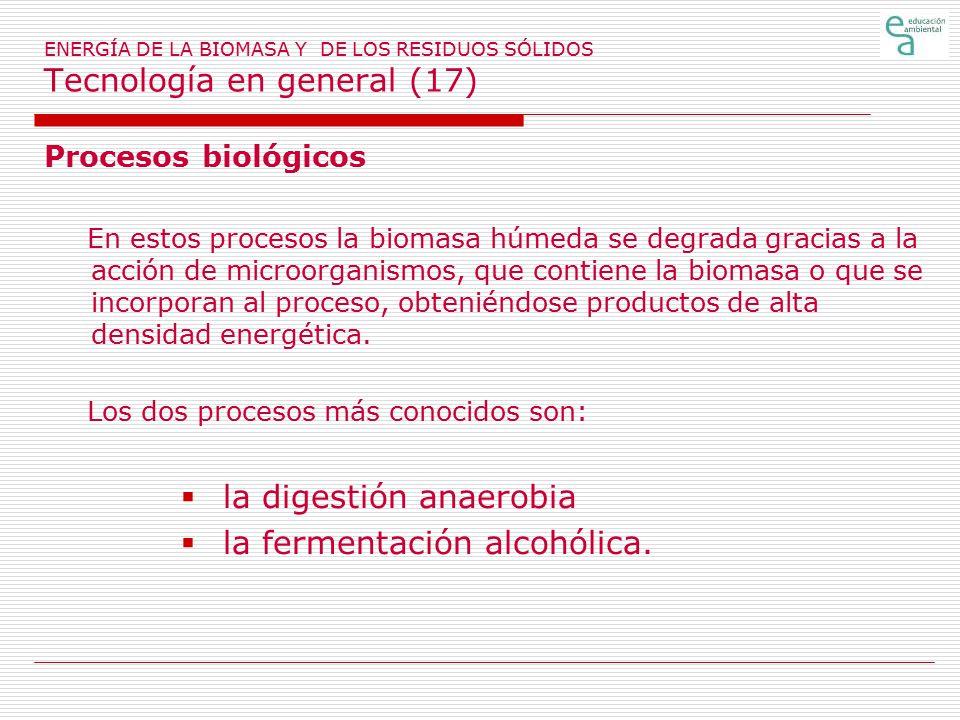 la digestión anaerobia la fermentación alcohólica.