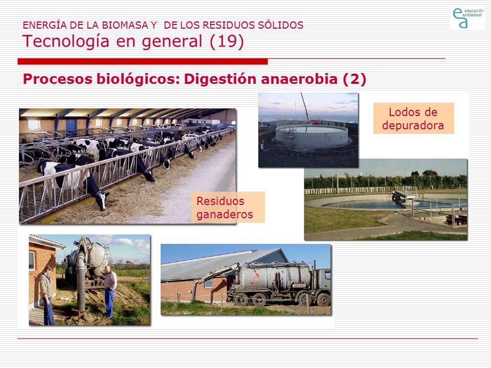 Procesos biológicos: Digestión anaerobia (2)