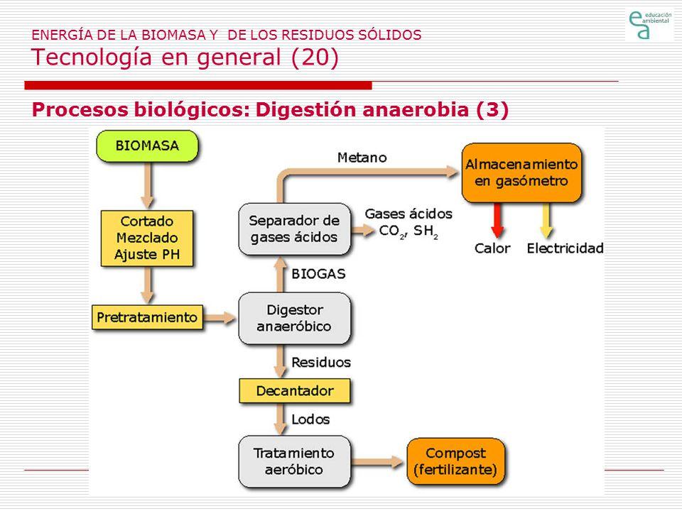 Procesos biológicos: Digestión anaerobia (3)