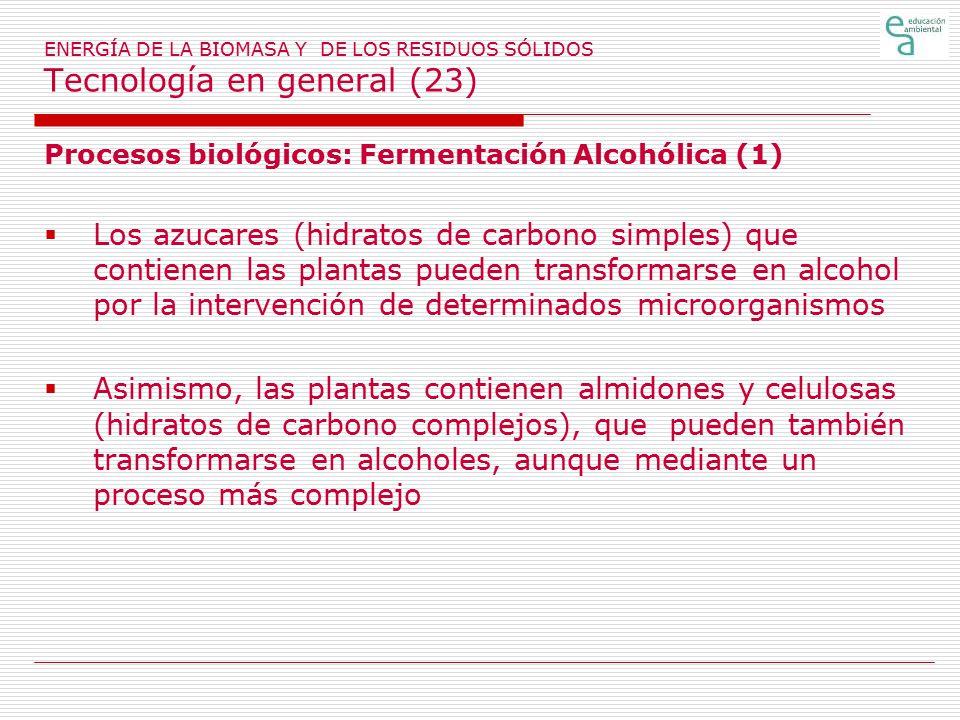 ENERGÍA DE LA BIOMASA Y DE LOS RESIDUOS SÓLIDOS Tecnología en general (23)