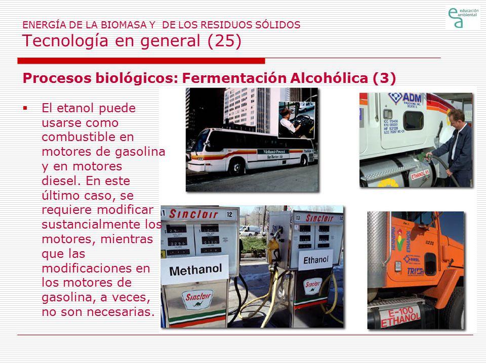 Procesos biológicos: Fermentación Alcohólica (3)