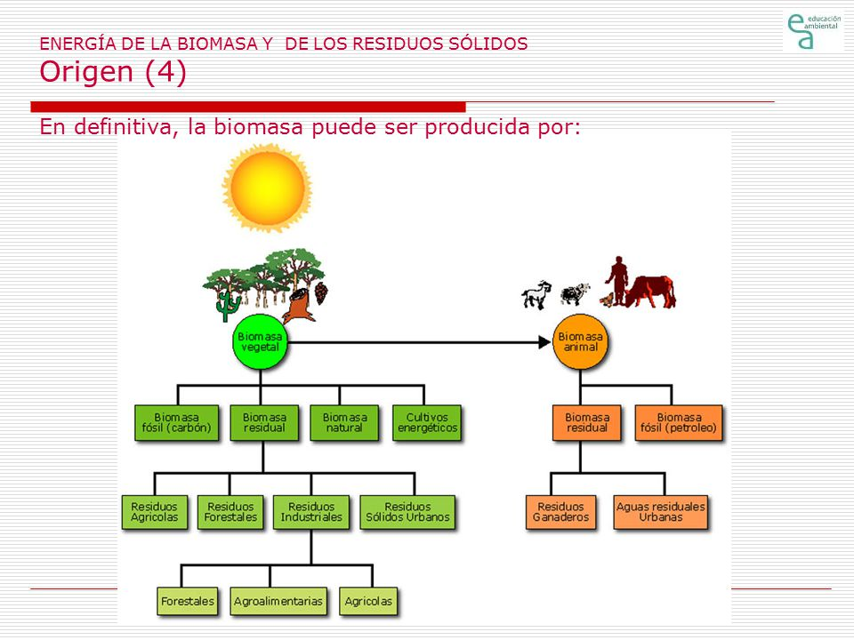 ENERGÍA DE LA BIOMASA Y DE LOS RESIDUOS SÓLIDOS Origen (4)