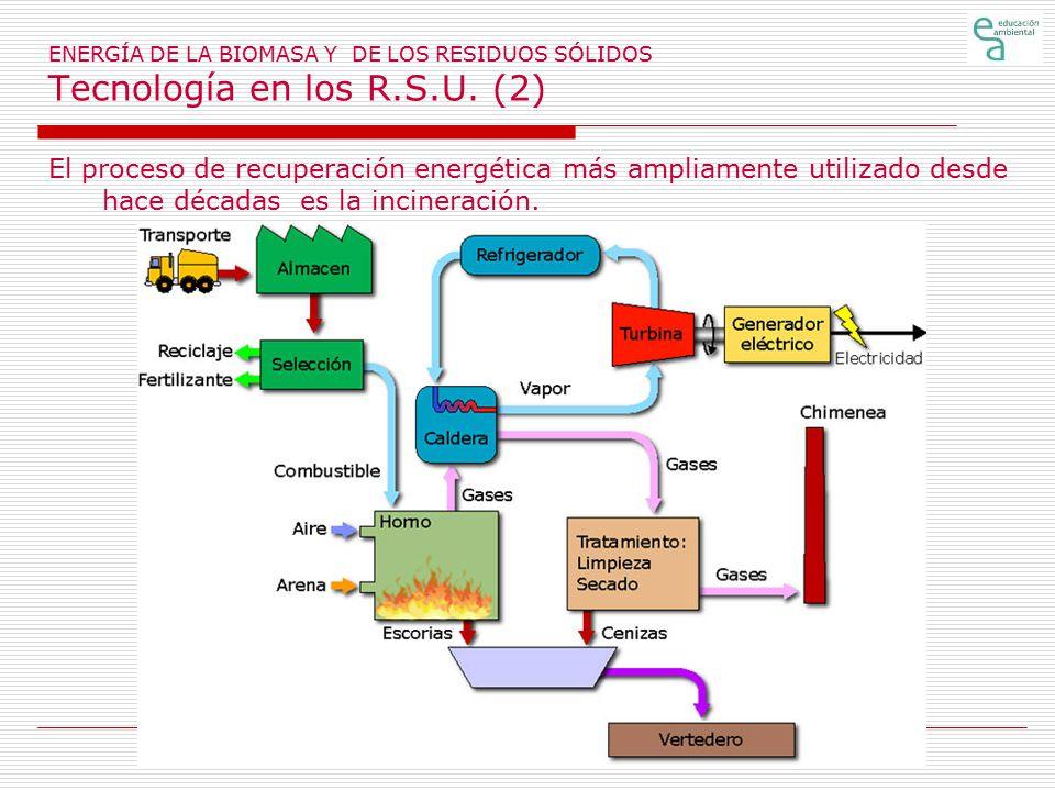 ENERGÍA DE LA BIOMASA Y DE LOS RESIDUOS SÓLIDOS Tecnología en los R. S