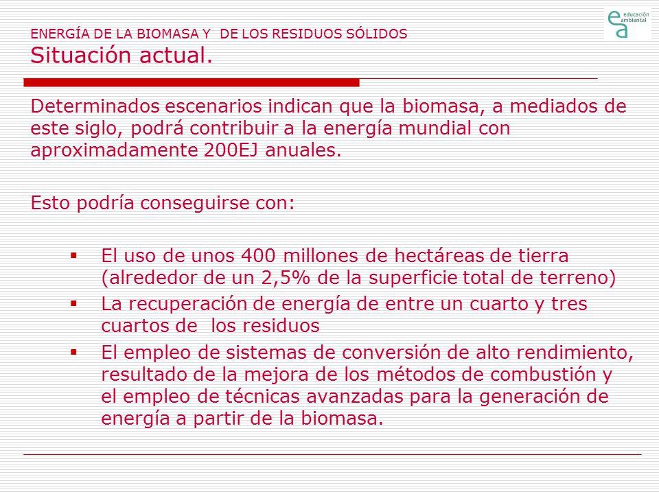 ENERGÍA DE LA BIOMASA Y DE LOS RESIDUOS SÓLIDOS Situación actual.