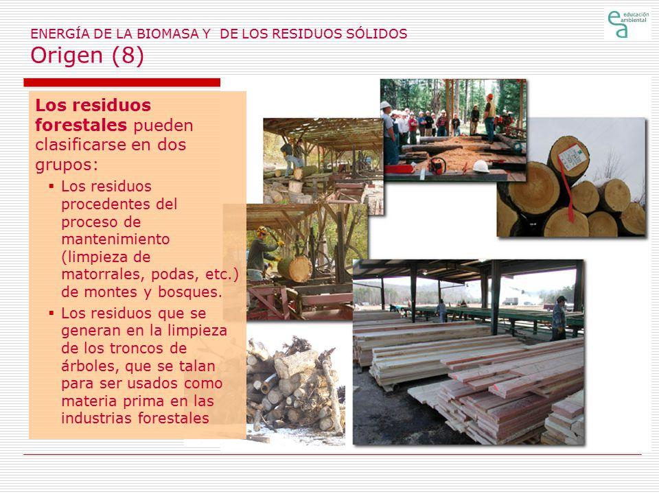 ENERGÍA DE LA BIOMASA Y DE LOS RESIDUOS SÓLIDOS Origen (8)