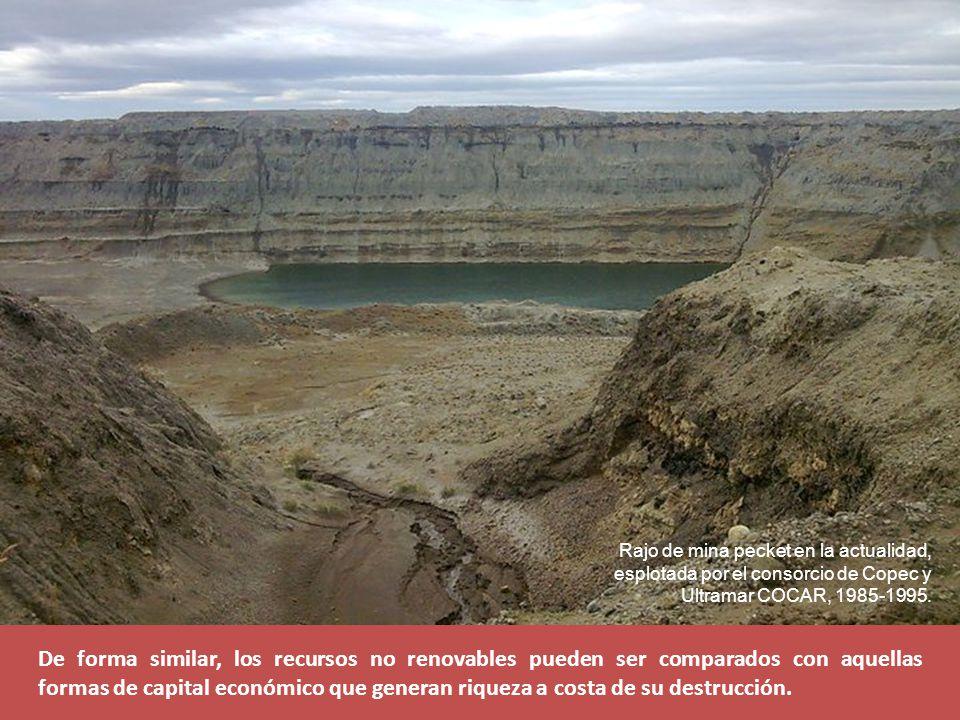 Rajo de mina pecket en la actualidad, esplotada por el consorcio de Copec y Ultramar COCAR, 1985-1995.