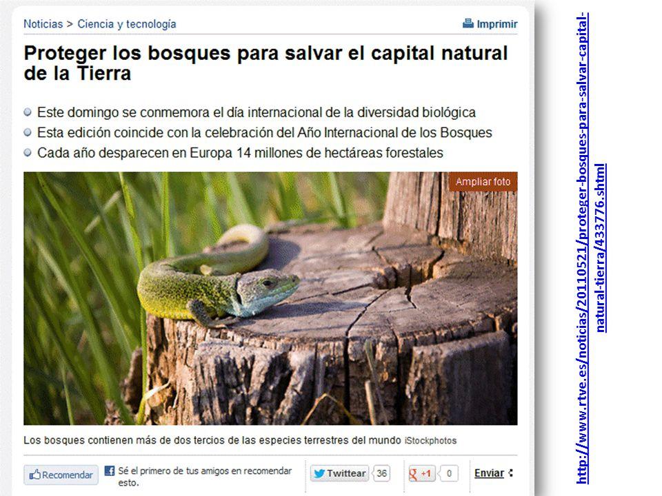 http://www.rtve.es/noticias/20110521/proteger-bosques-para-salvar-capital-natural-tierra/433776.shtml