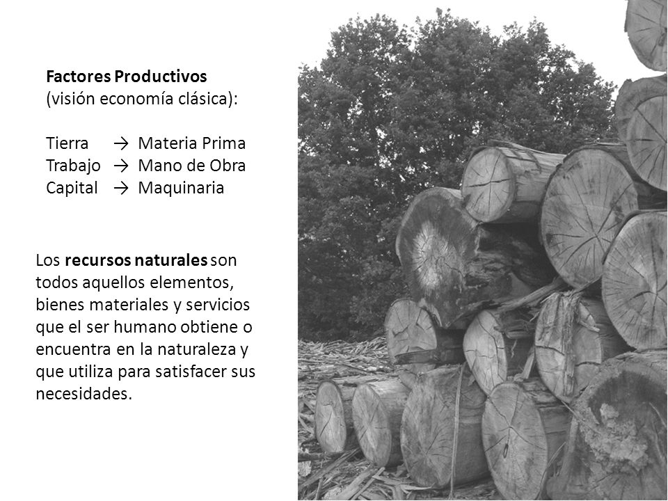 Factores Productivos (visión economía clásica): Tierra → Materia Prima. Trabajo → Mano de Obra.
