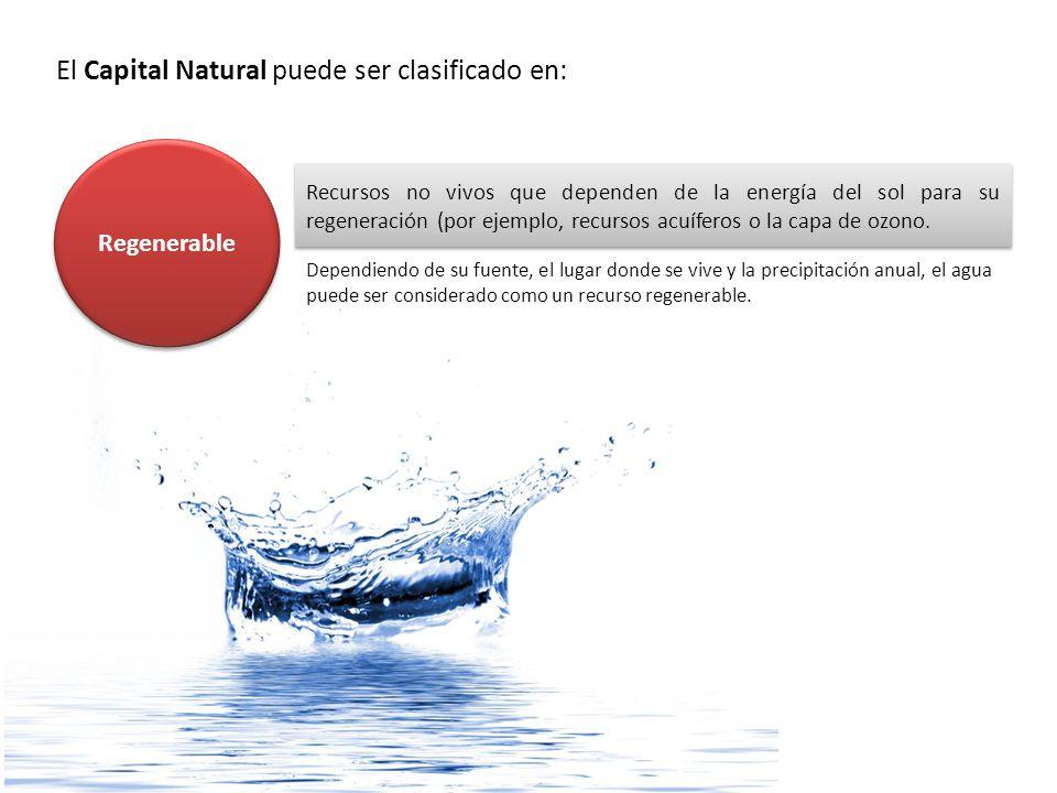El Capital Natural puede ser clasificado en: