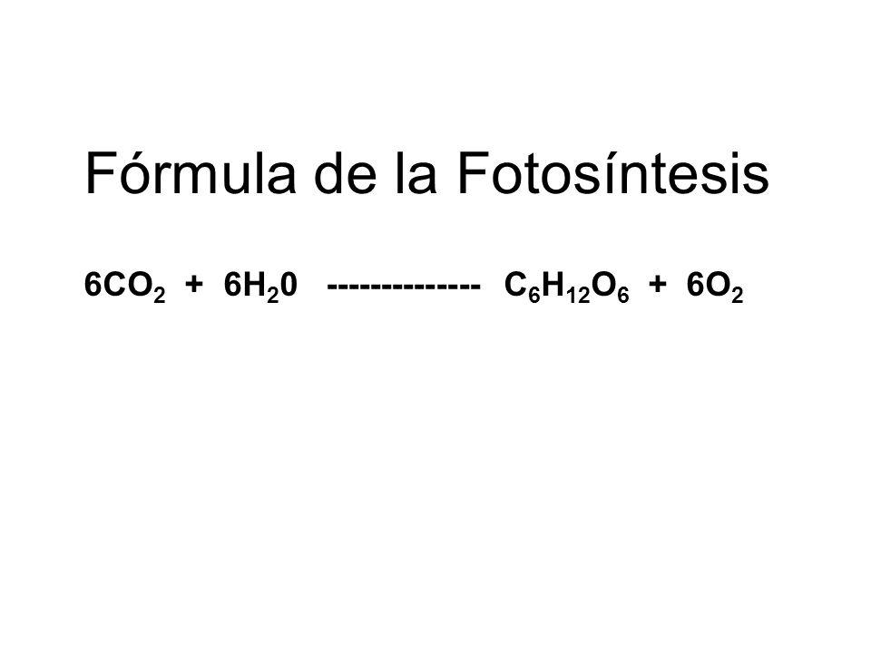 6CO2 + 6H20 -------------- C6H12O6 + 6O2