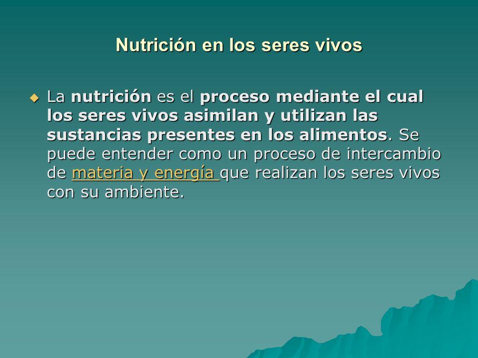 Nutrición en los seres vivos