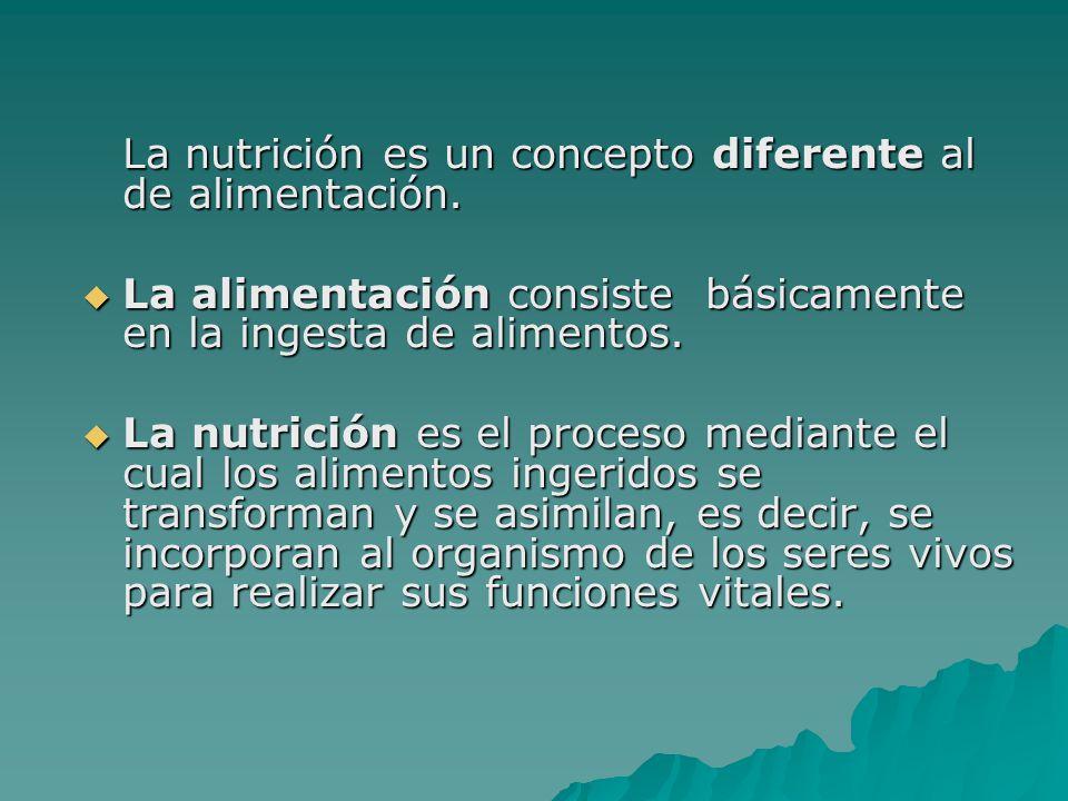 La nutrición es un concepto diferente al de alimentación.