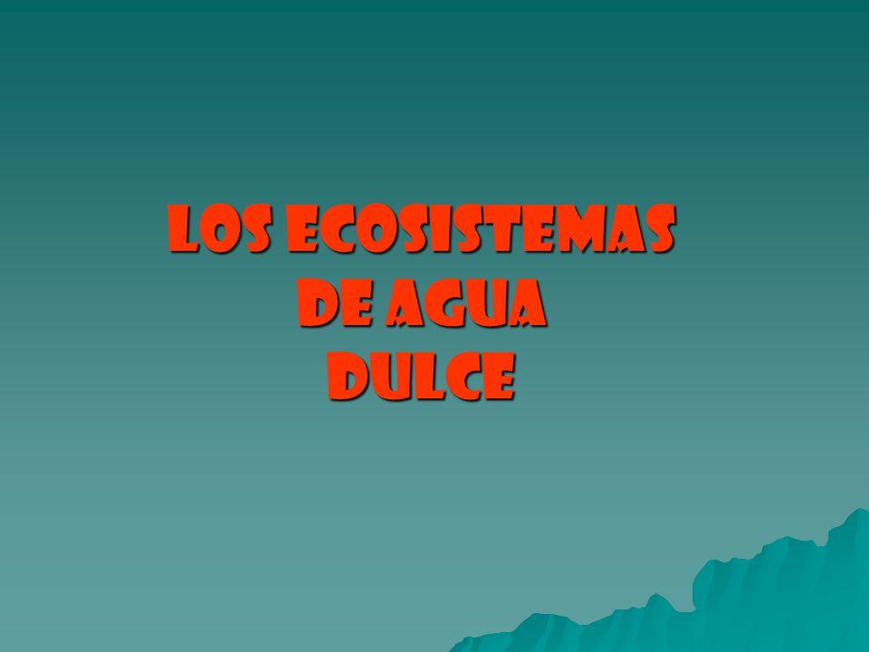 LOS ECOSISTEMAS DE AGUA DULCE