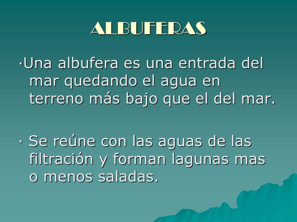 ALBUFERAS ·Una albufera es una entrada del mar quedando el agua en terreno más bajo que el del mar.