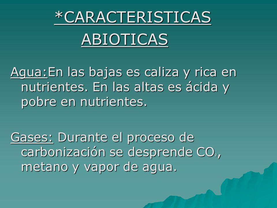 *CARACTERISTICAS ABIOTICAS