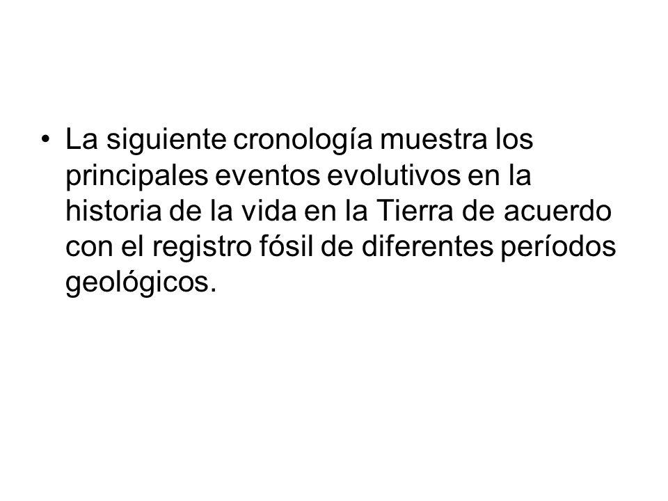 La siguiente cronología muestra los principales eventos evolutivos en la historia de la vida en la Tierra de acuerdo con el registro fósil de diferentes períodos geológicos.