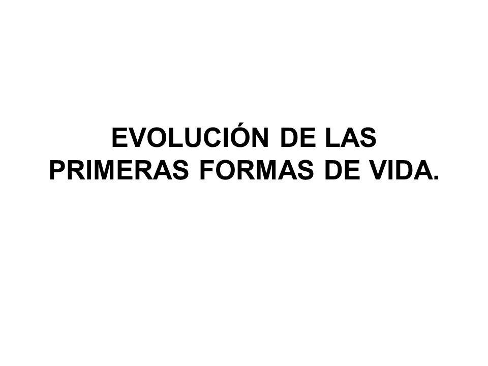 EVOLUCIÓN DE LAS PRIMERAS FORMAS DE VIDA.