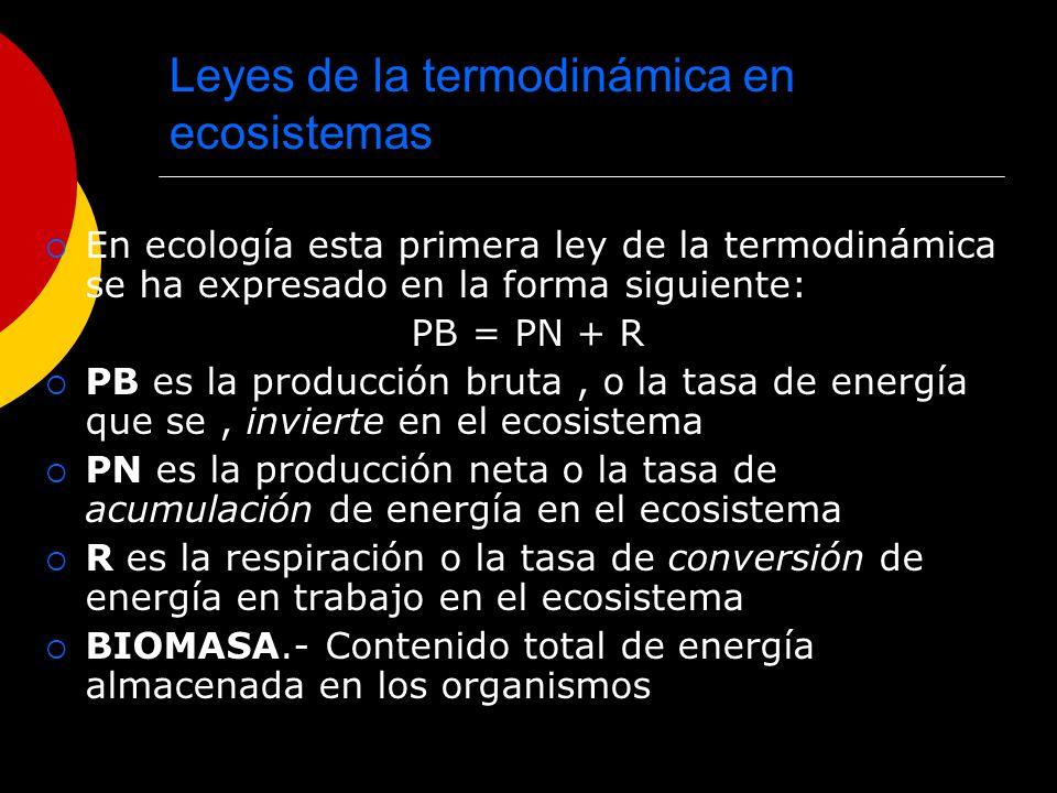 Leyes de la termodinámica en ecosistemas