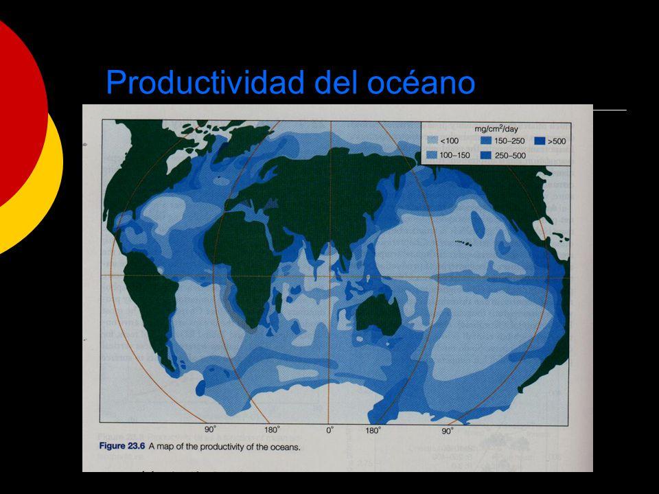 Productividad del océano