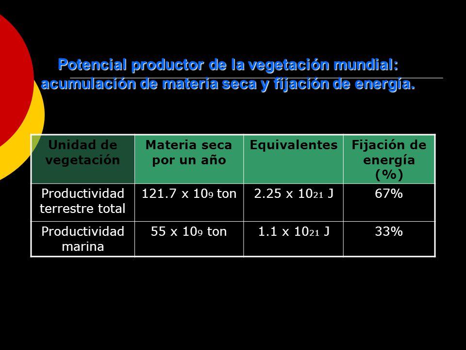 Fijación de energía (%)