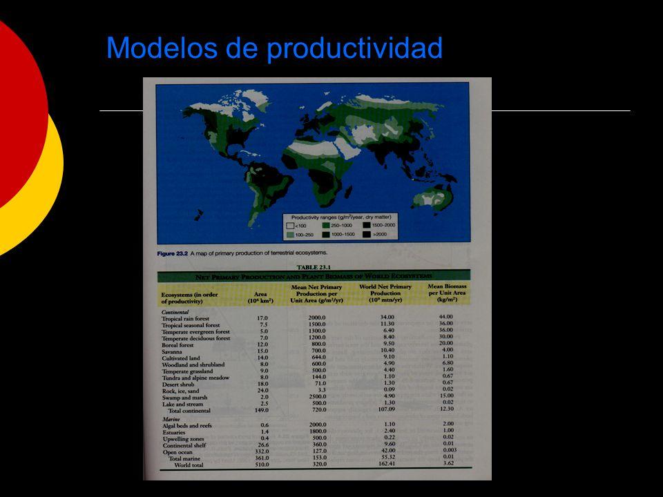 Modelos de productividad