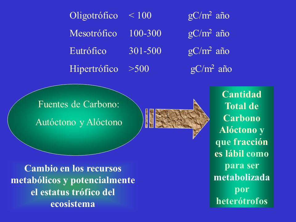 Oligotrófico < 100 gC/m2 año