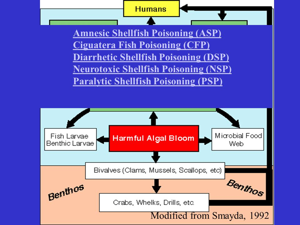 Amnesic Shellfish Poisoning (ASP) Ciguatera Fish Poisoning (CFP) Diarrhetic Shellfish Poisoning (DSP) Neurotoxic Shellfish Poisoning (NSP) Paralytic Shellfish Poisoning (PSP)
