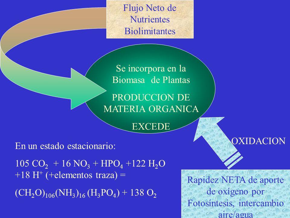 Flujo Neto de Nutrientes Biolimitantes