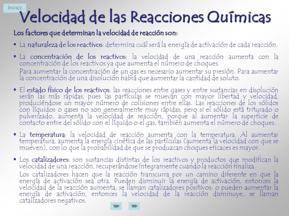 Velocidad de las Reacciones Químicas