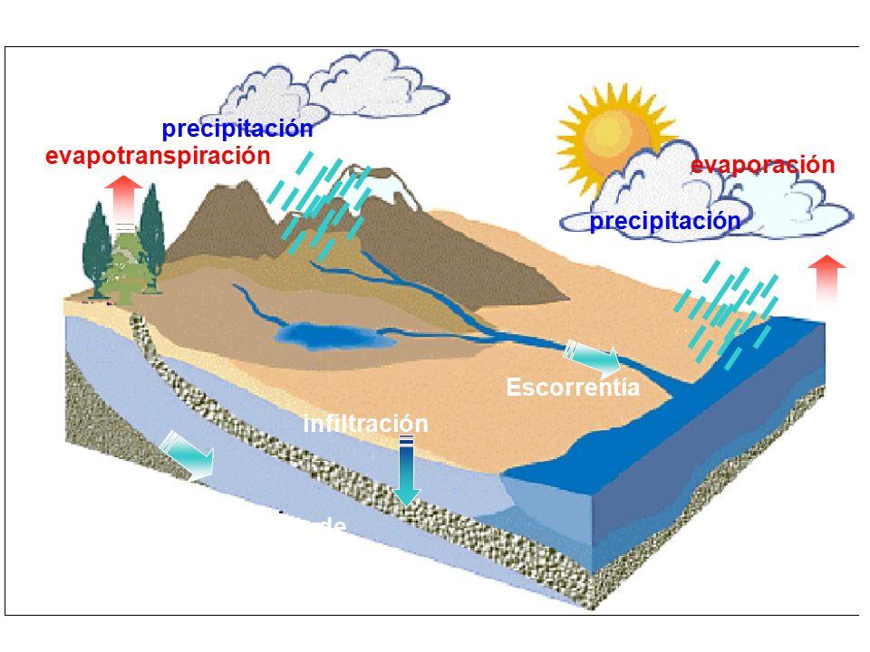 precipitación evapotranspiración. evaporación. Escorrentía.