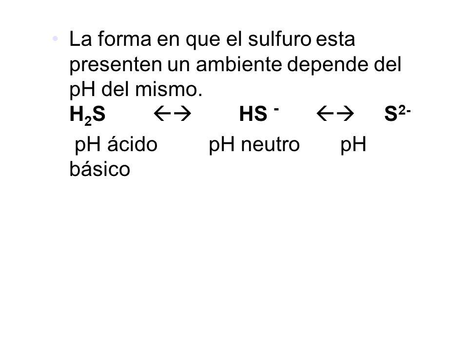 La forma en que el sulfuro esta presenten un ambiente depende del pH del mismo. H2S  HS -  S2-