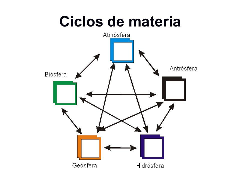 Ciclos de materia