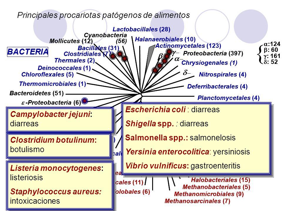 Principales procariotas patógenos de alimentos