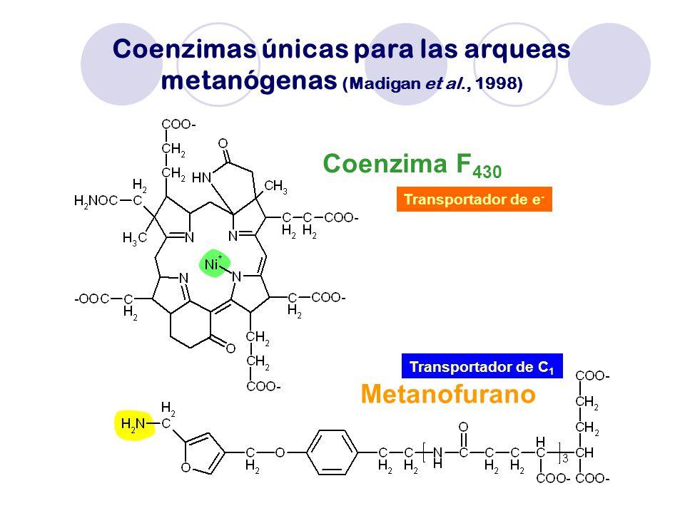 Coenzimas únicas para las arqueas metanógenas (Madigan et al., 1998)