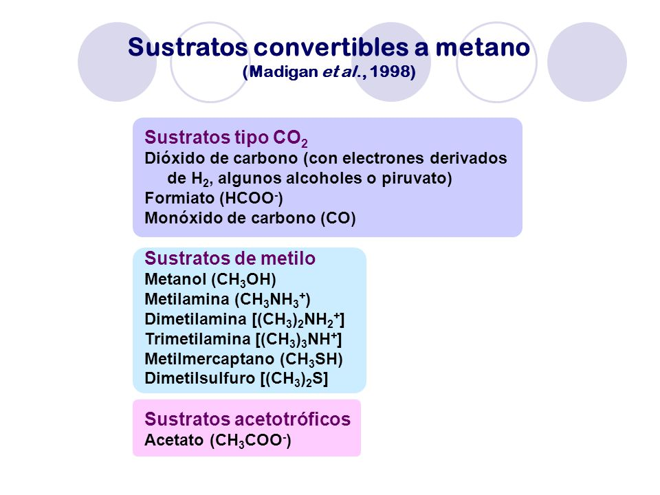 Sustratos convertibles a metano